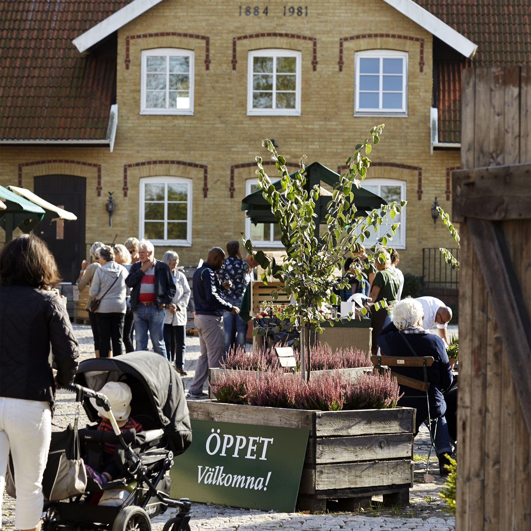 Saxell & Jalle på Solnäs Gård den 13 augusti 2017