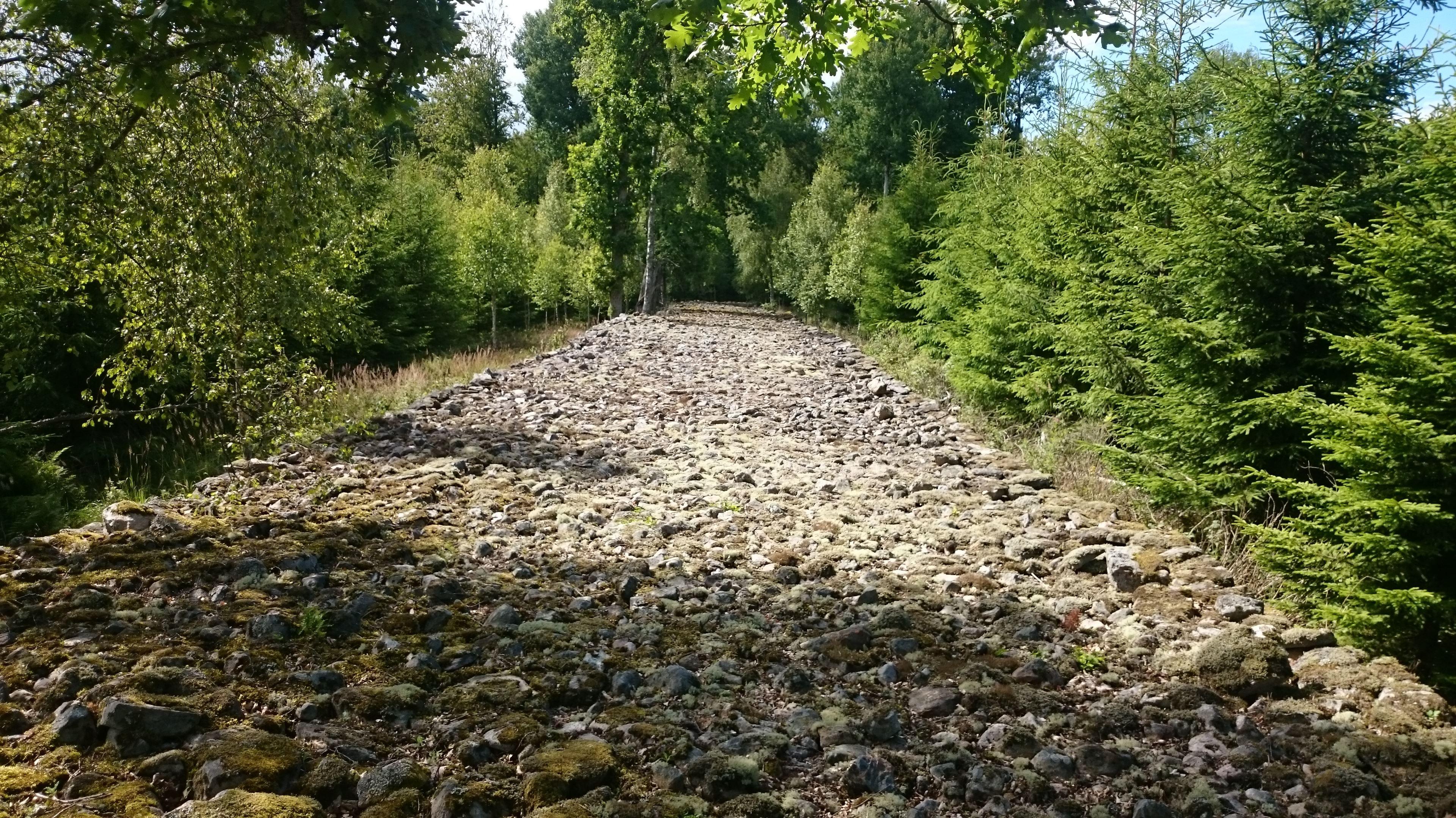 Stenmur i Runnarsköp