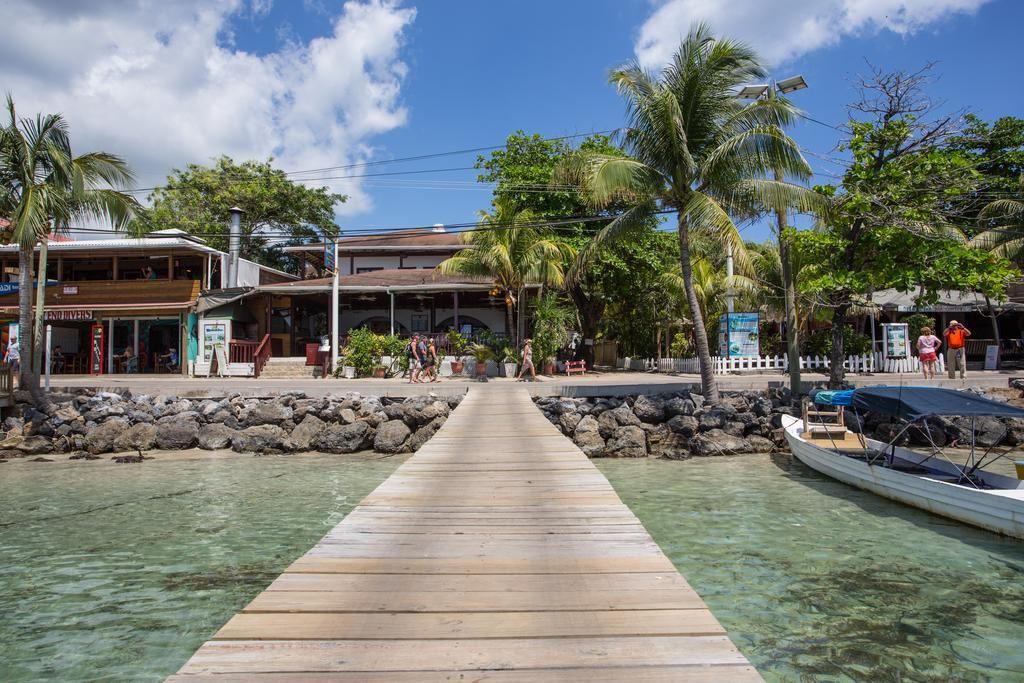 Splash Inn & Dive Resort