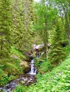 Ryjvejegaejsie/Ryfjället mountain
