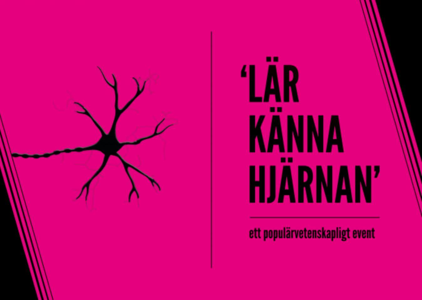 Lär känna hjärnan - ett populärvetenskapligt event i Stadshallen