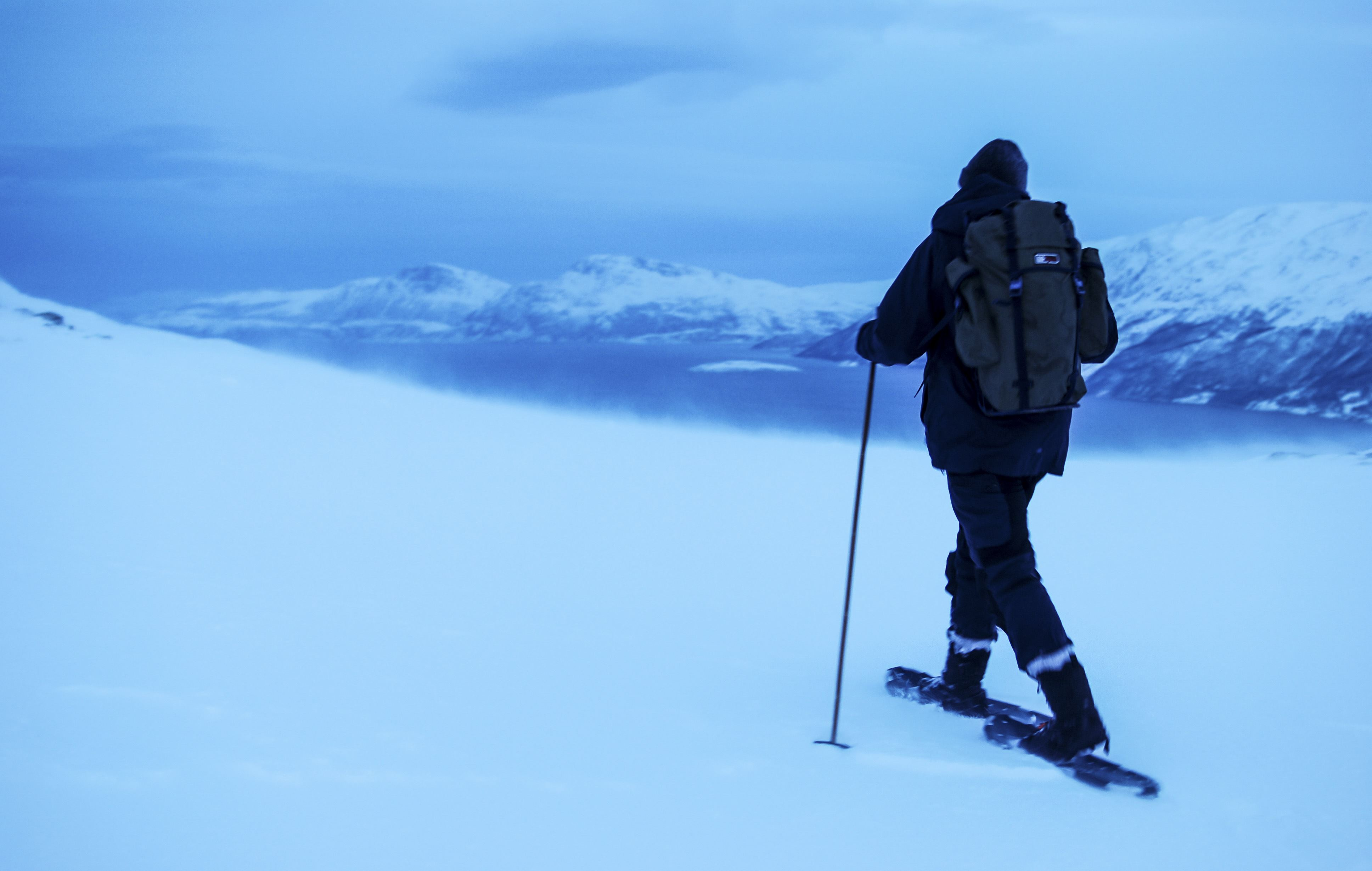 Guided snowshoeing - The Green Adventure