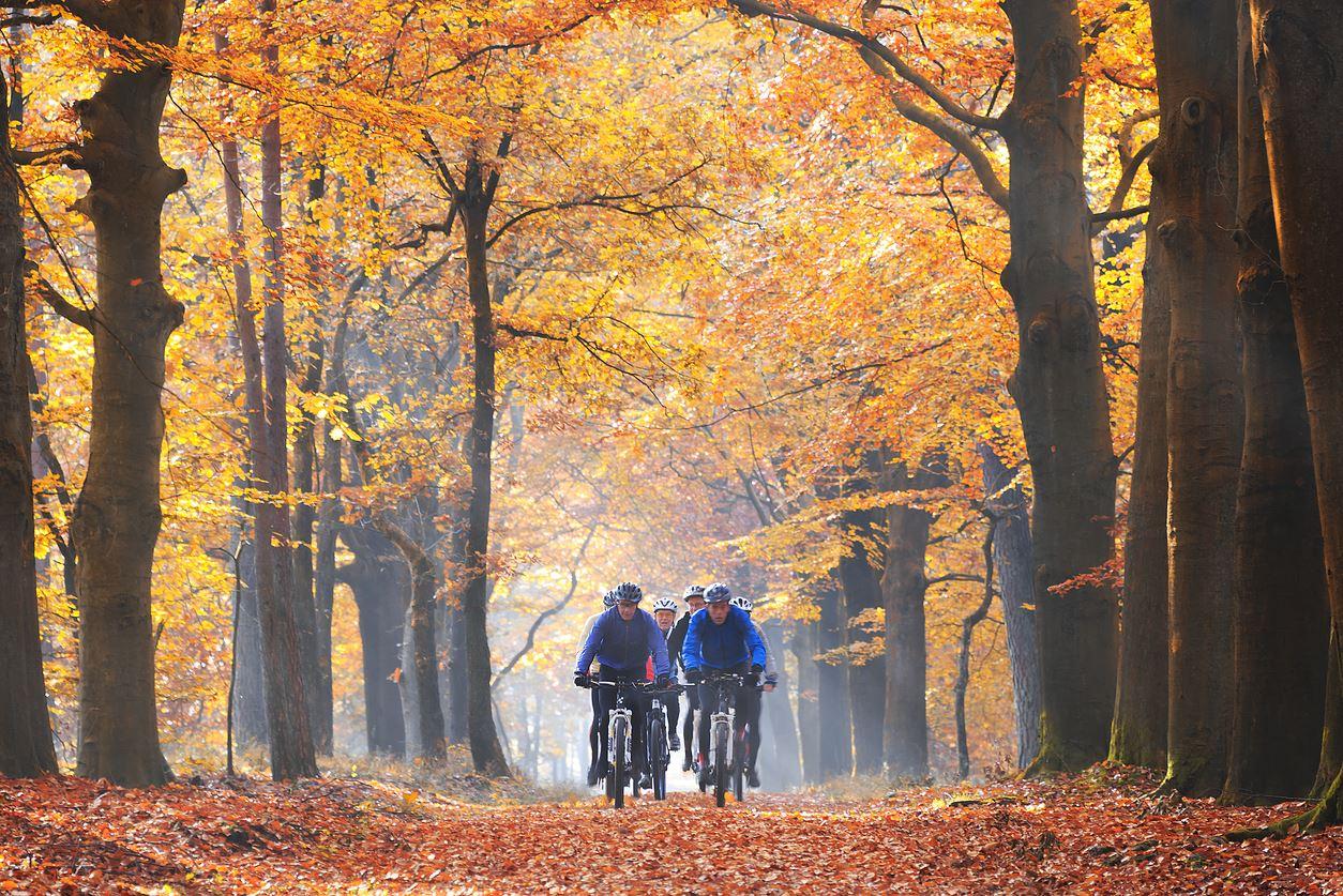 Uthyrning av mountainbikes