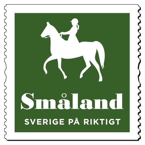Lokal/regional dressyr stora hästar