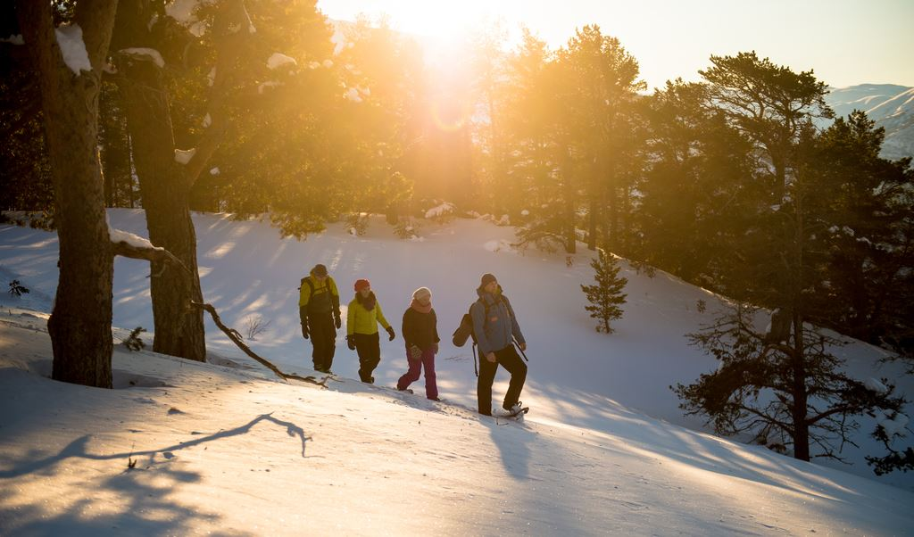 © Sverre Hjørnevik , Morning Snowshoe Hike