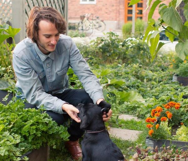 Expertlunch: Mat, människor och mångfald - odling i Södertälje