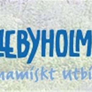 Skillebyholm