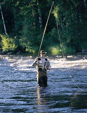 Etelä-Päijänteen Kalastuspalvelut