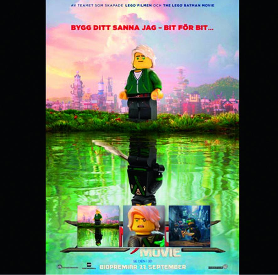 Bio - Lego Ninja movie