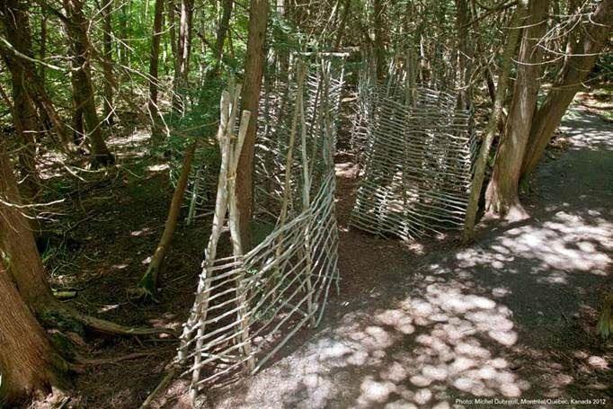 Cykeltur till Kronoskogen och guidning av (X) sites