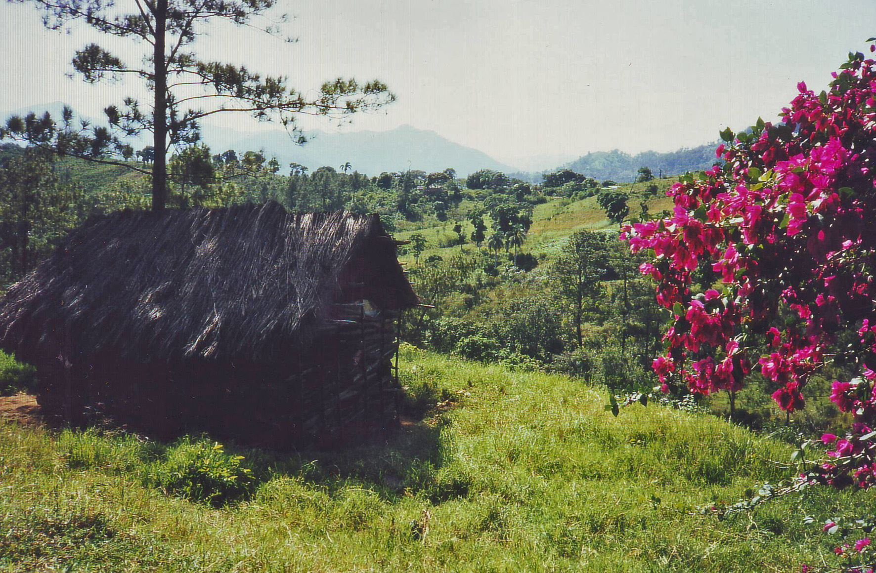 """Utställning """"Vi och den lilla karibiska bergsbyn"""""""