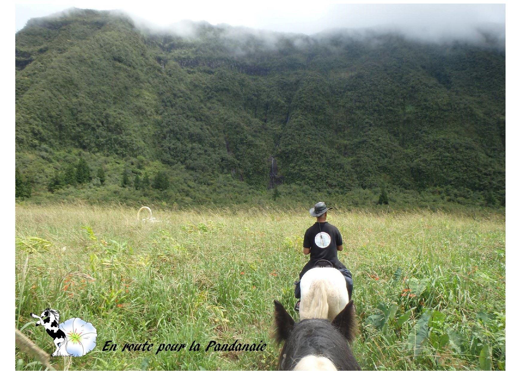 Auf Entdeckung des Feuchtgebiets La Pandanaie und der Wasserfälle auf dem Rücken eines Pferdes