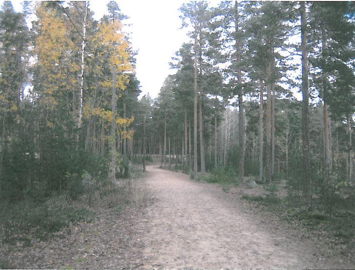Jymylinna nature trail