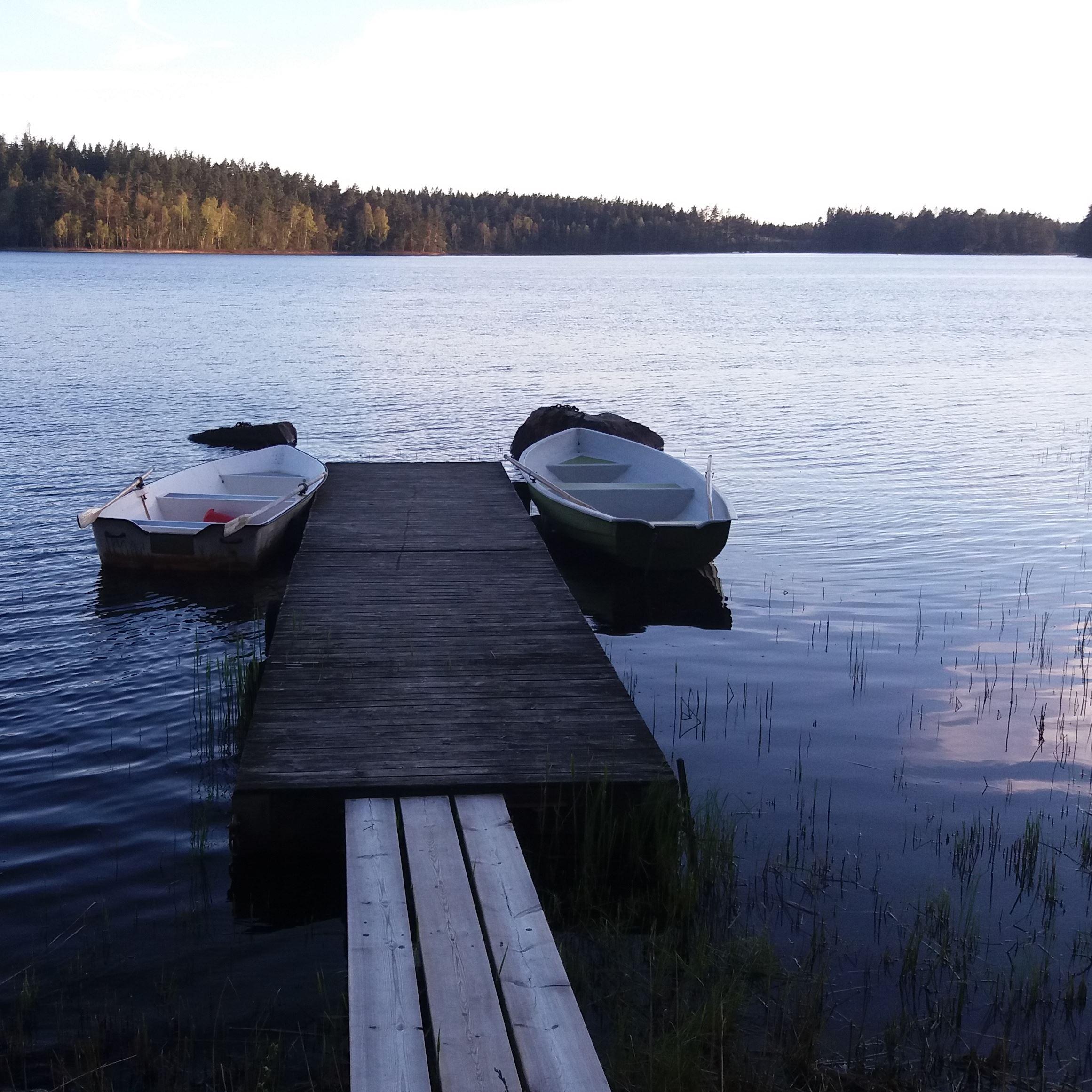 Vesljungasjön, fiske