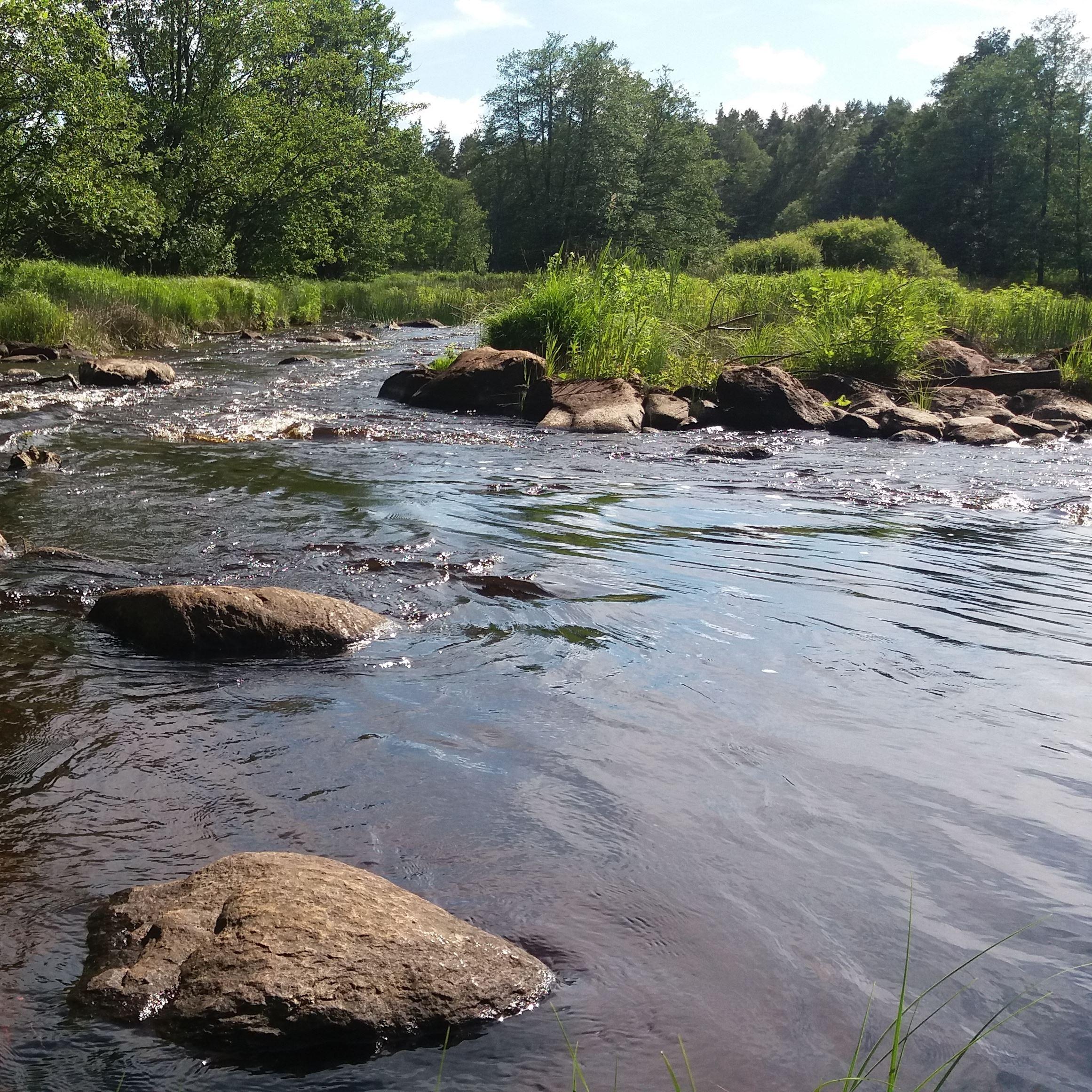 Helge å (Delary - Hallaryd - Visseltofta), fiske