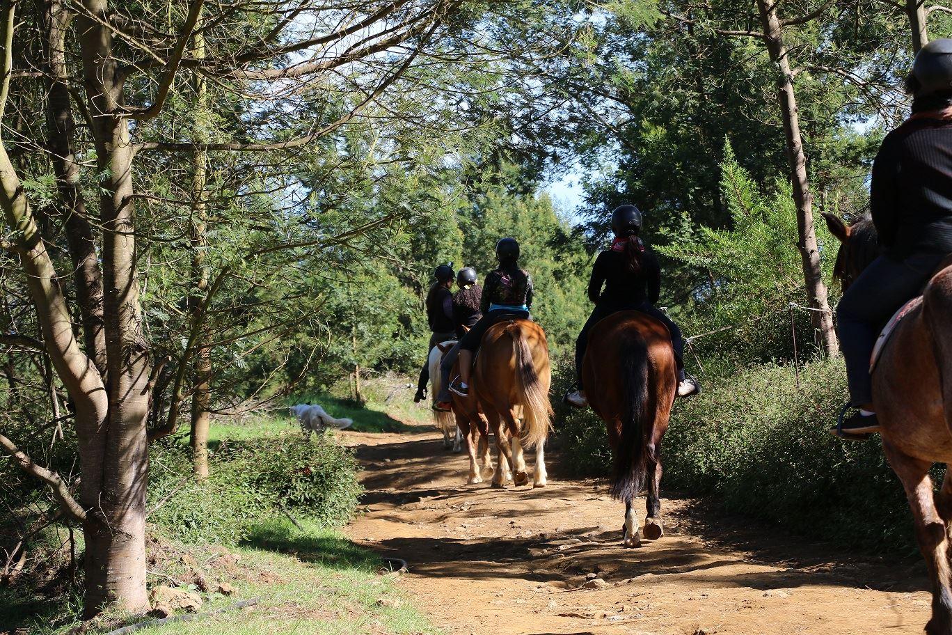 Zarlor détente chevauchées dans l'Ouest - La quiétude des Hauts de l'Ouest