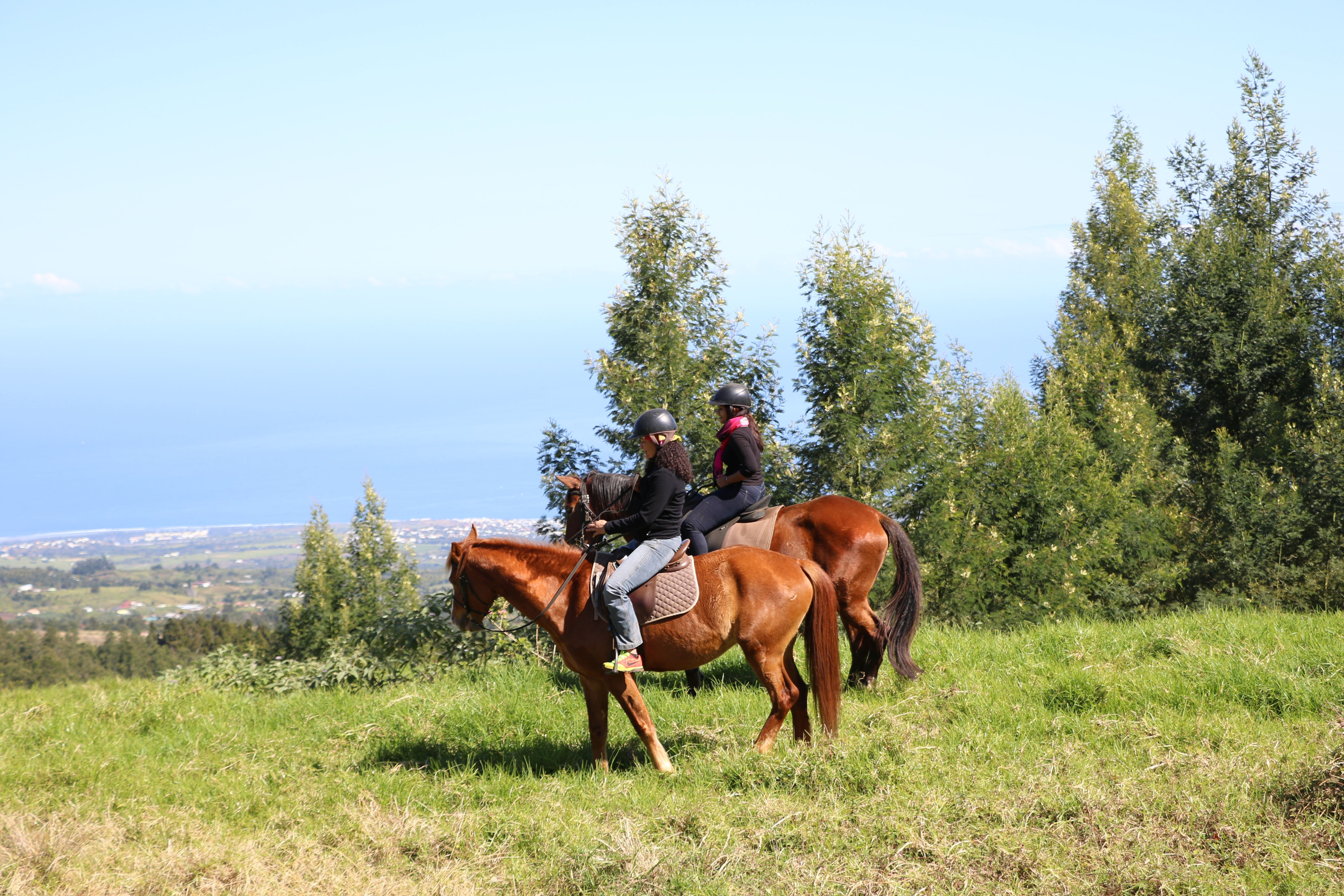 Zarlor relaxation on horseback in the west – The tranquillity in the West Highlands