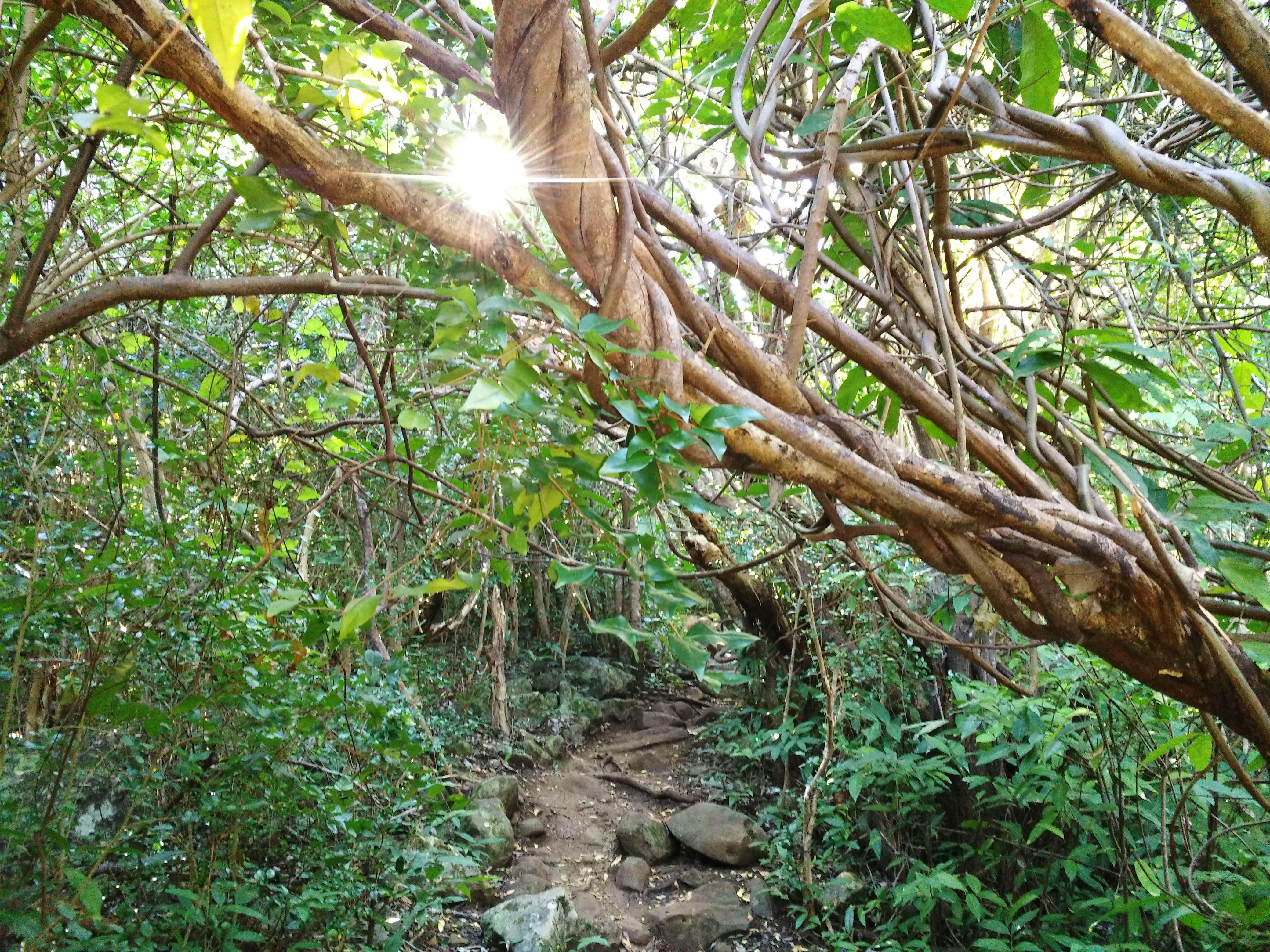 Zarlor rando culture Sentier Kalla