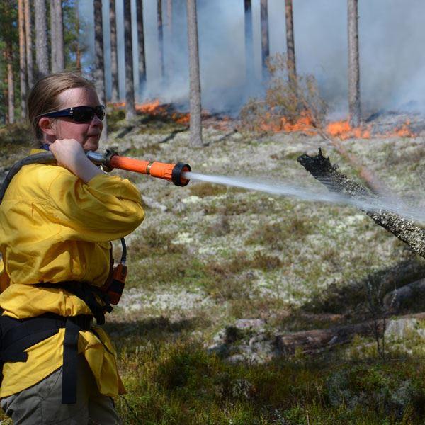 © Länsstyrelsen Dalarna, Att vårda naturen med eld