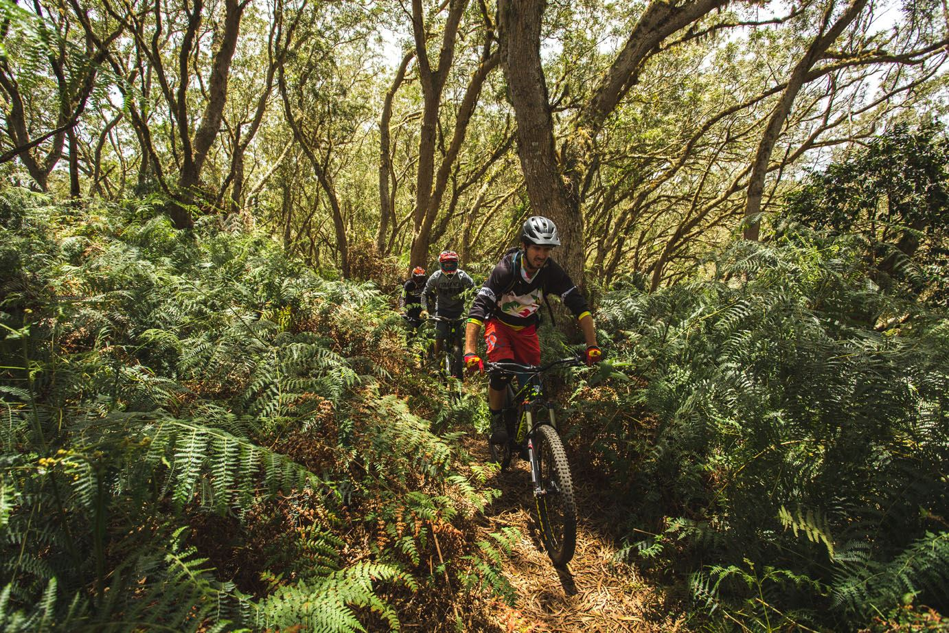 Zarlor thrills and spills – Bike adventure