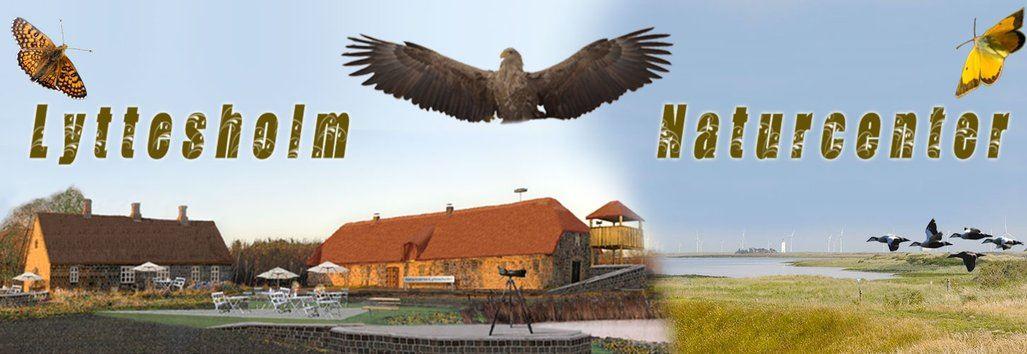 Rovfugletur til Hyllekrog-Sakfjed Reservatet