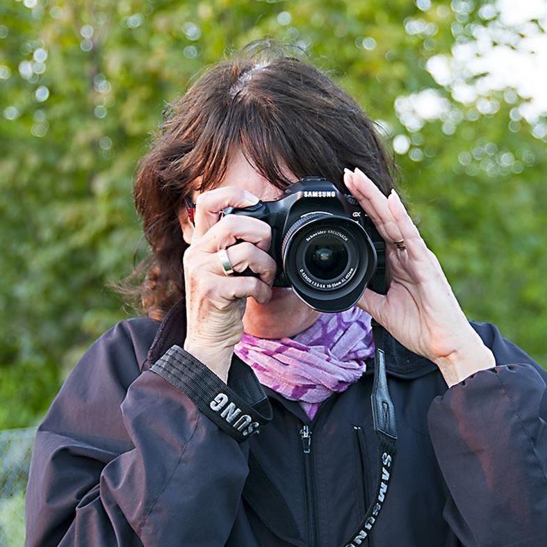 Fotokurs för nybörjare