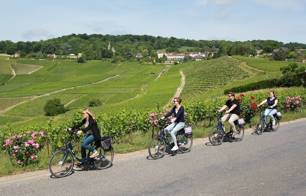 Discover the Champagne vineyards by bike