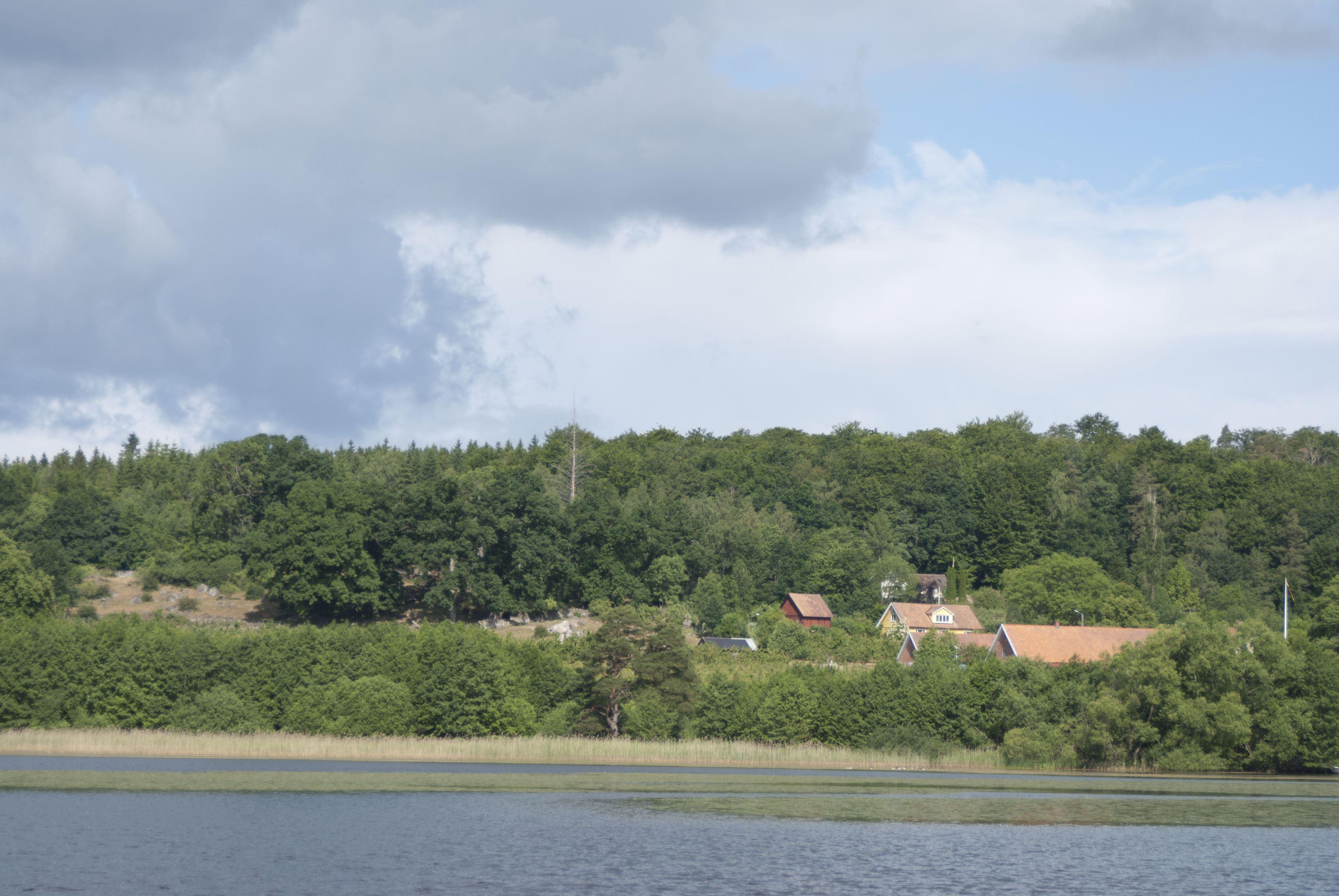 Tobias Delfin, Klackabacken beach, Näsum