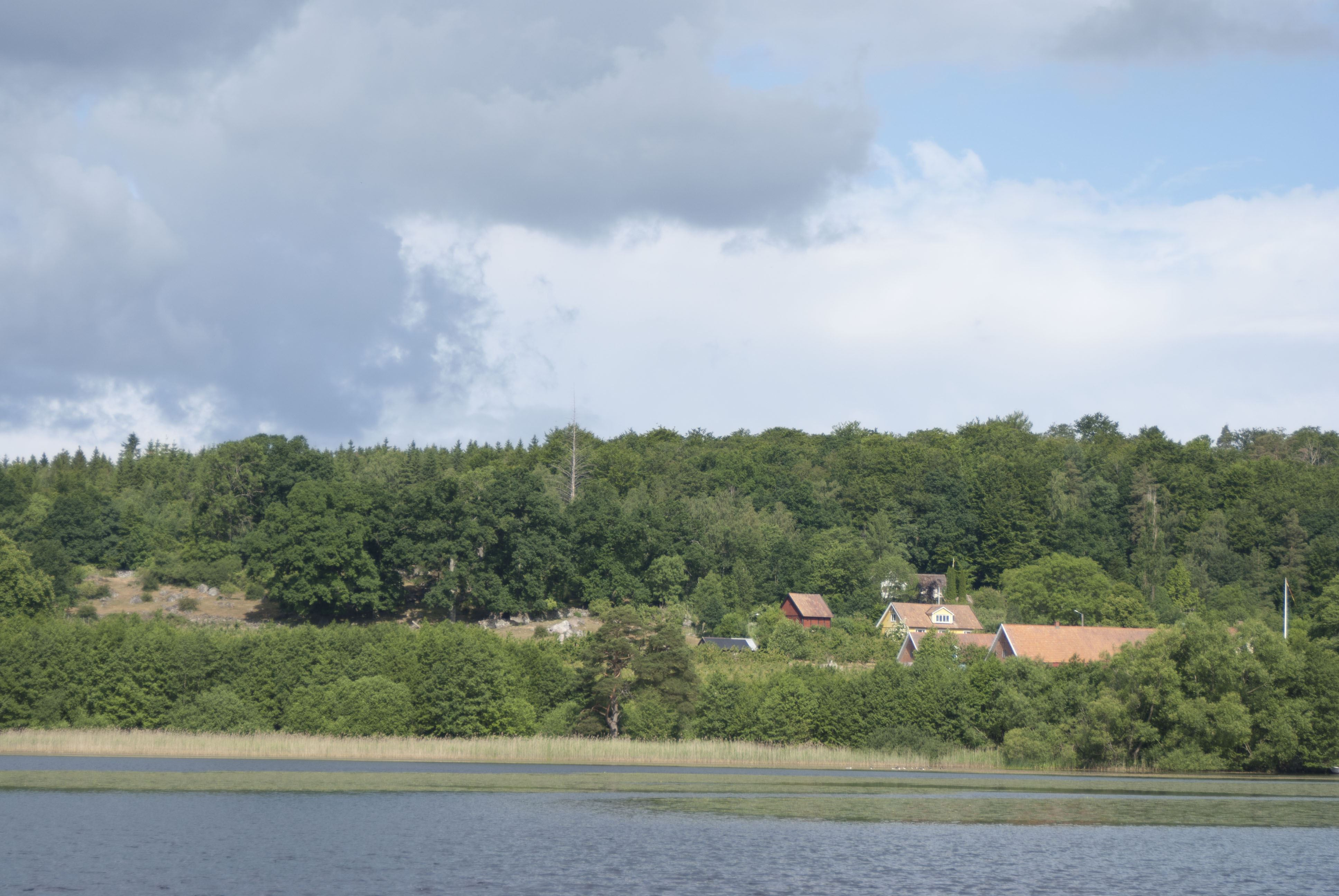 Tobias Delfin, Klackabackens badplats, Näsum