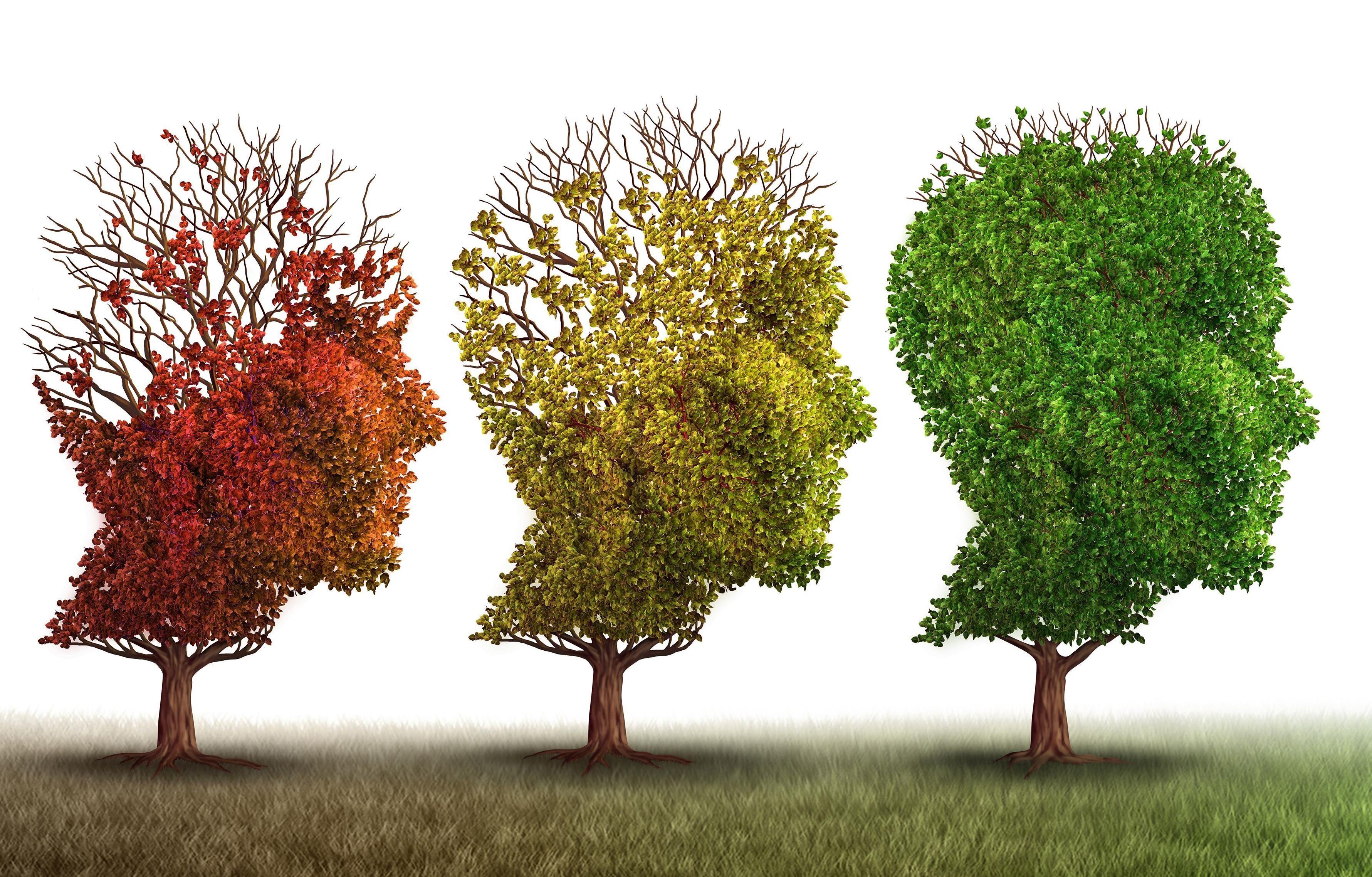 Föreläsning - Vad är demens och vilket stöd kan du få?