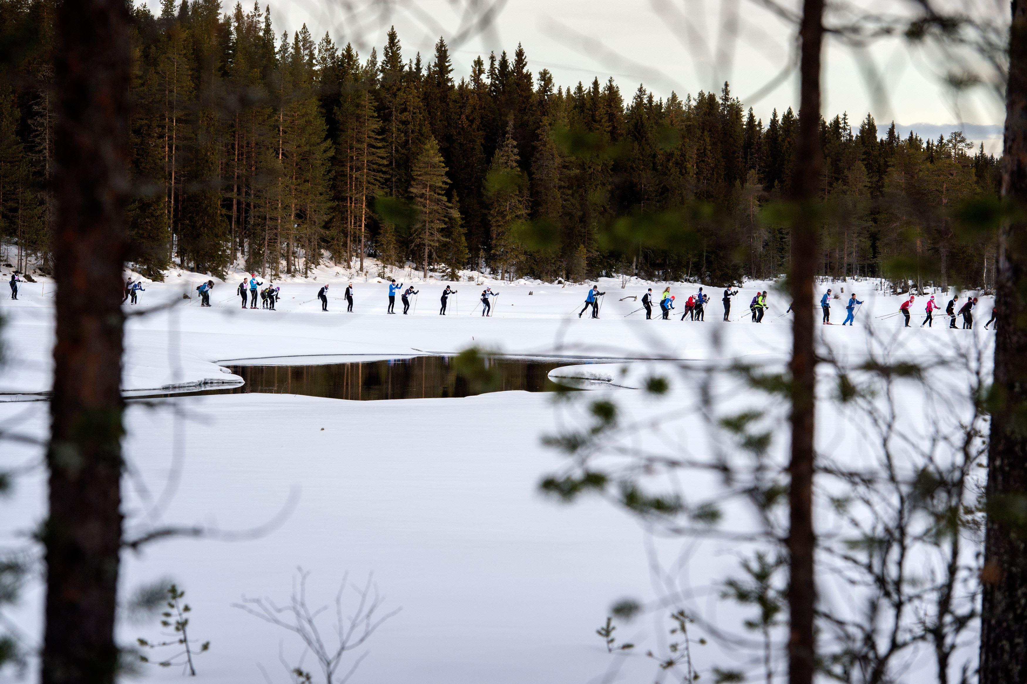 Vasaloppet - Cross country ski race