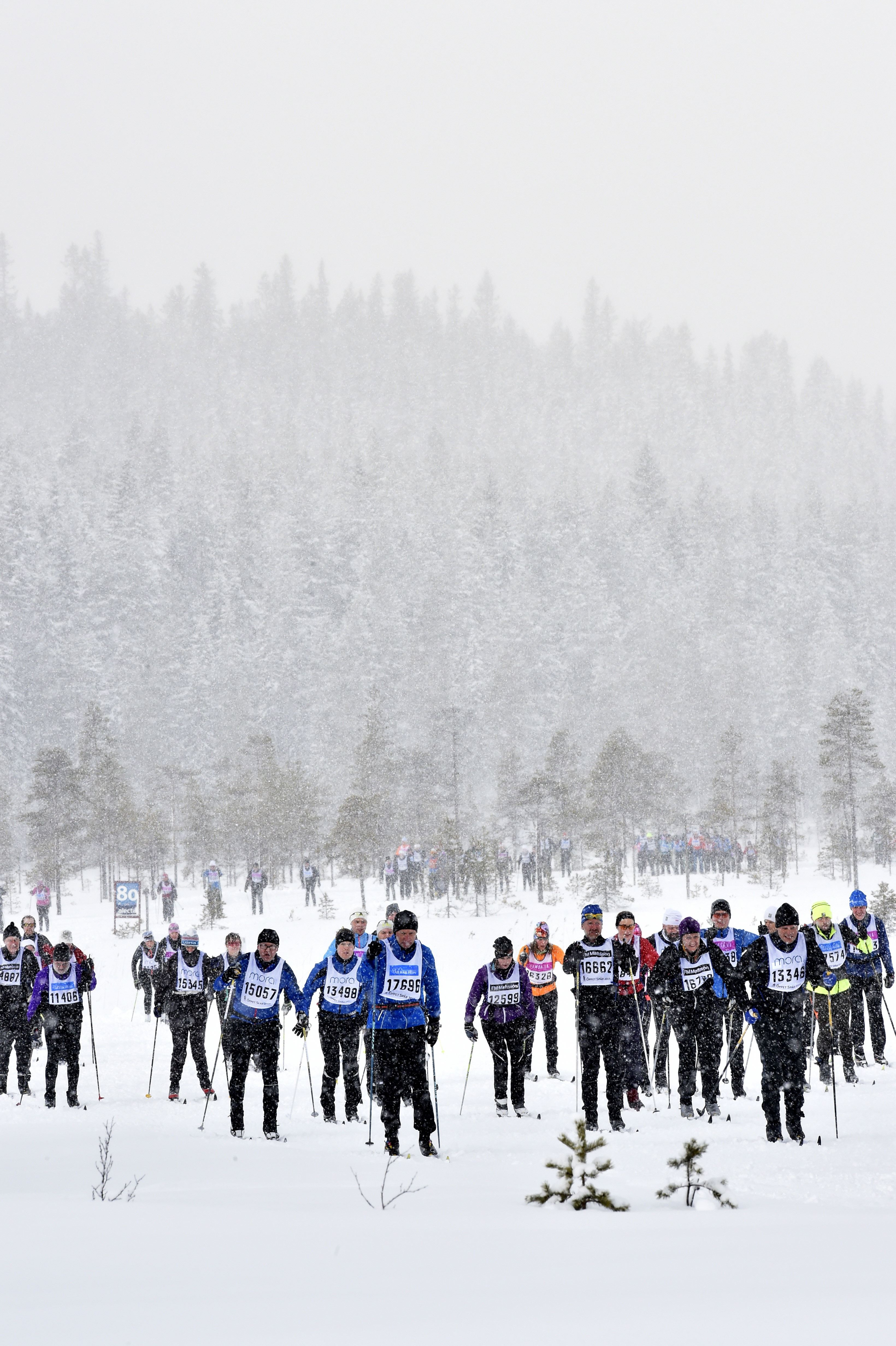 Öppet Spår, Vasaloppet - Cross country ski race