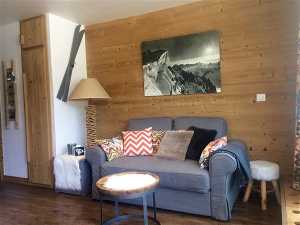 2 rooms 4 people ski-in ski-out / OURSE BLEUE (Mountain of Charm)