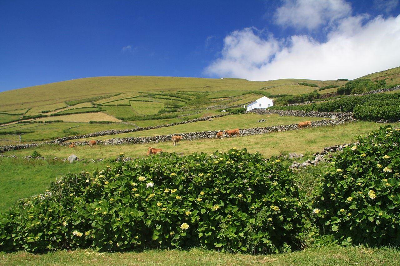Det okända Azorerna