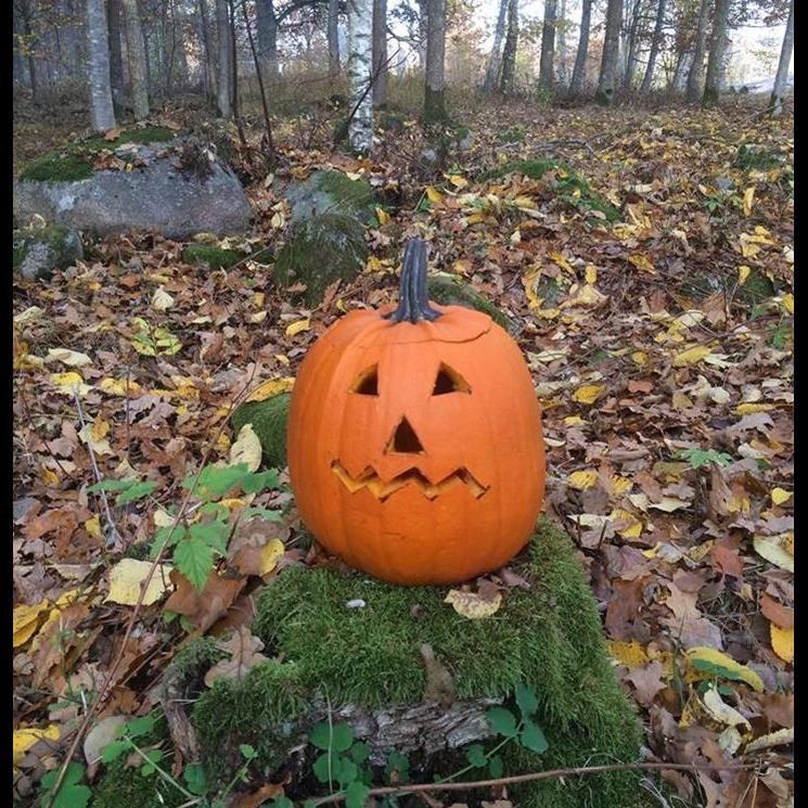 Höstlov: Halloween smyg