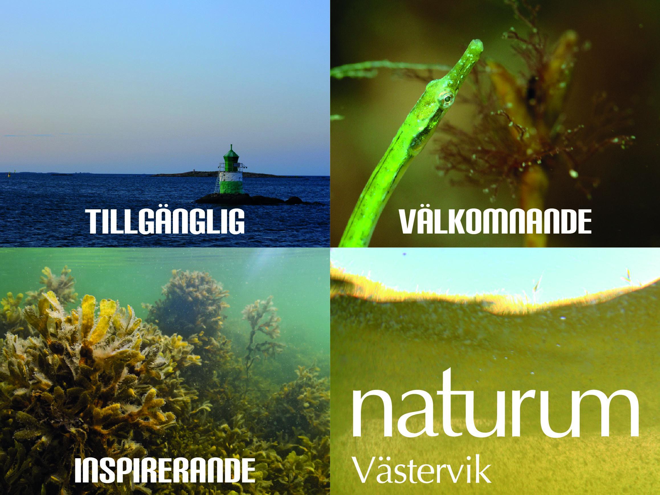 Naturum Västervik