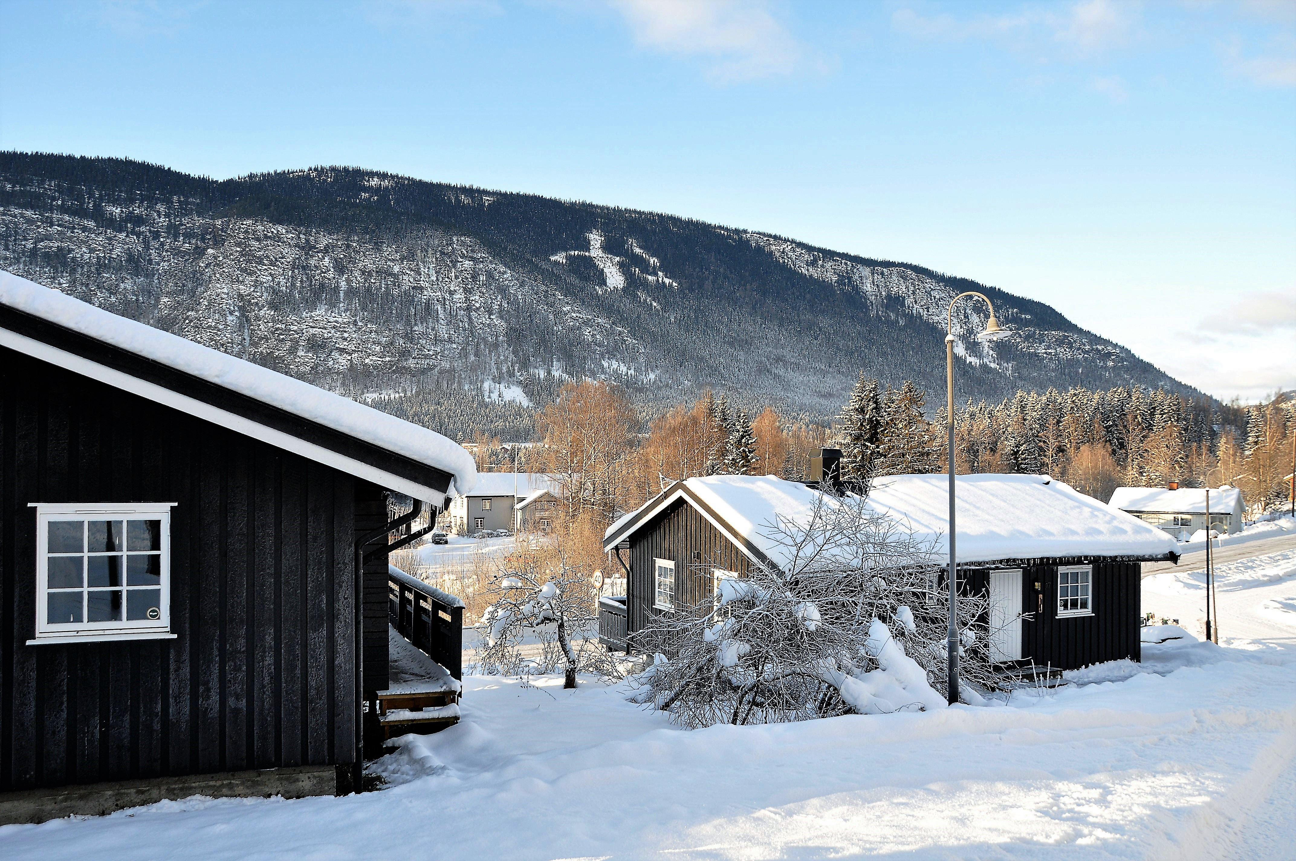 Bergstad cabin 17