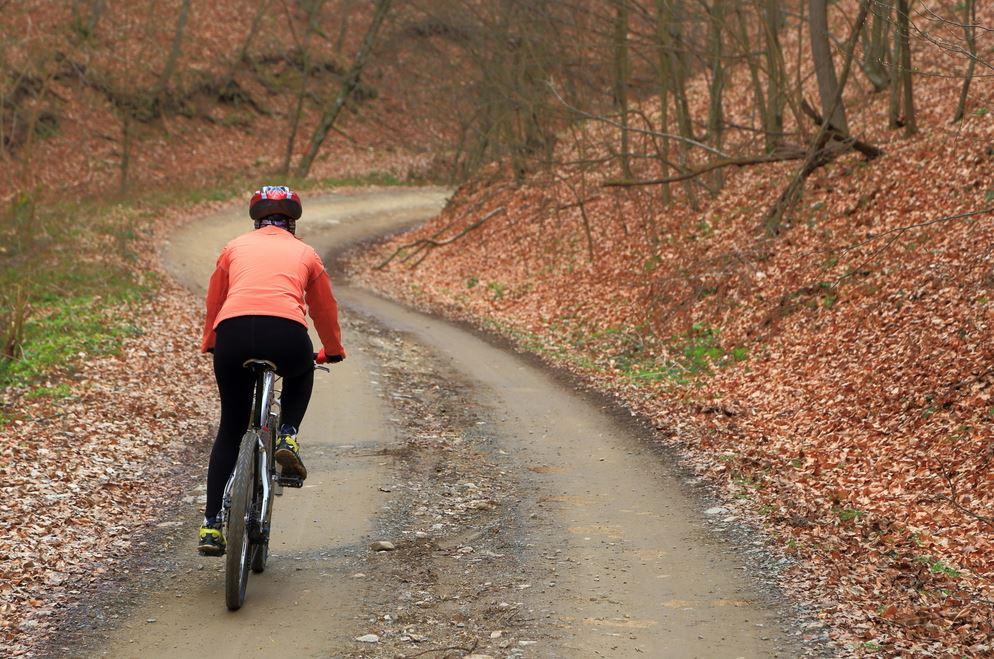 Rent a bike, an electric bike or a mtb in Växjö