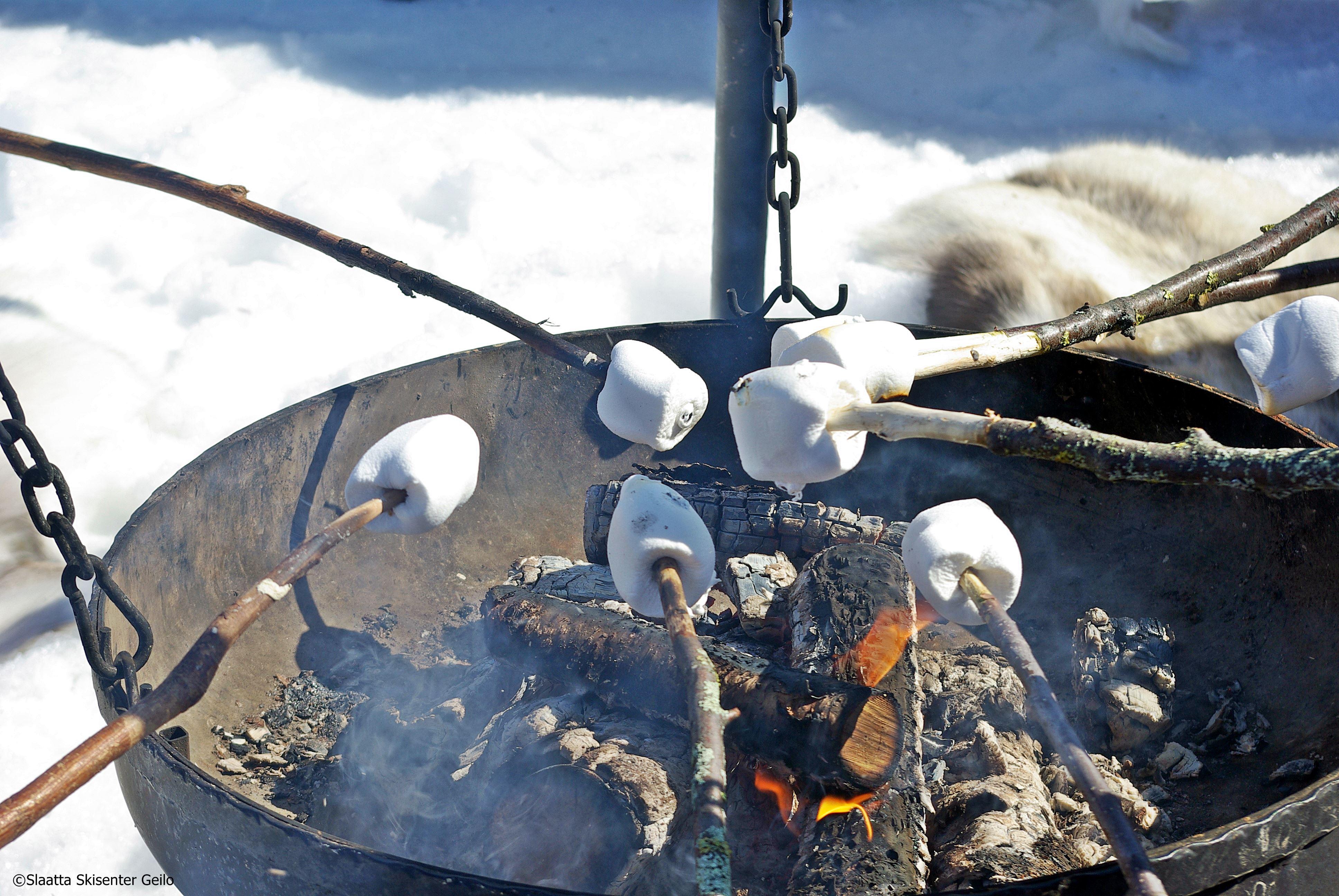 Family snowshoeing, tobogganing and pinnebrød baking