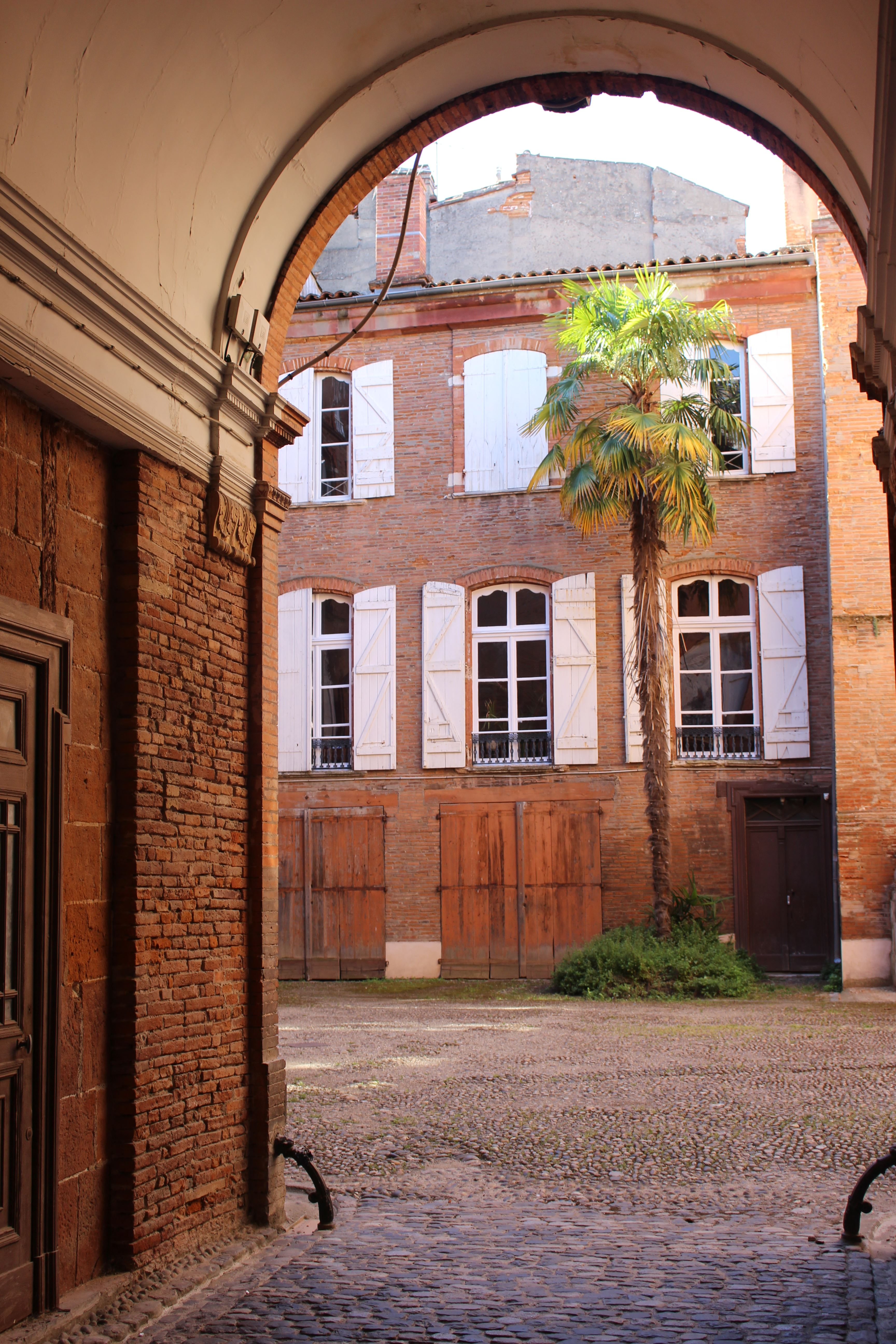 Toulouse's enigmatic quest