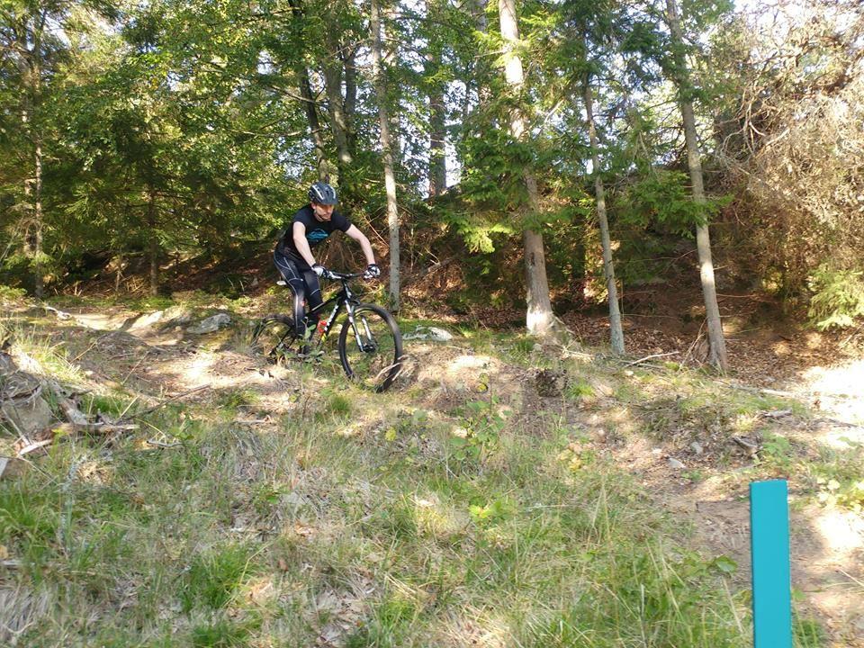 Cykelslingor