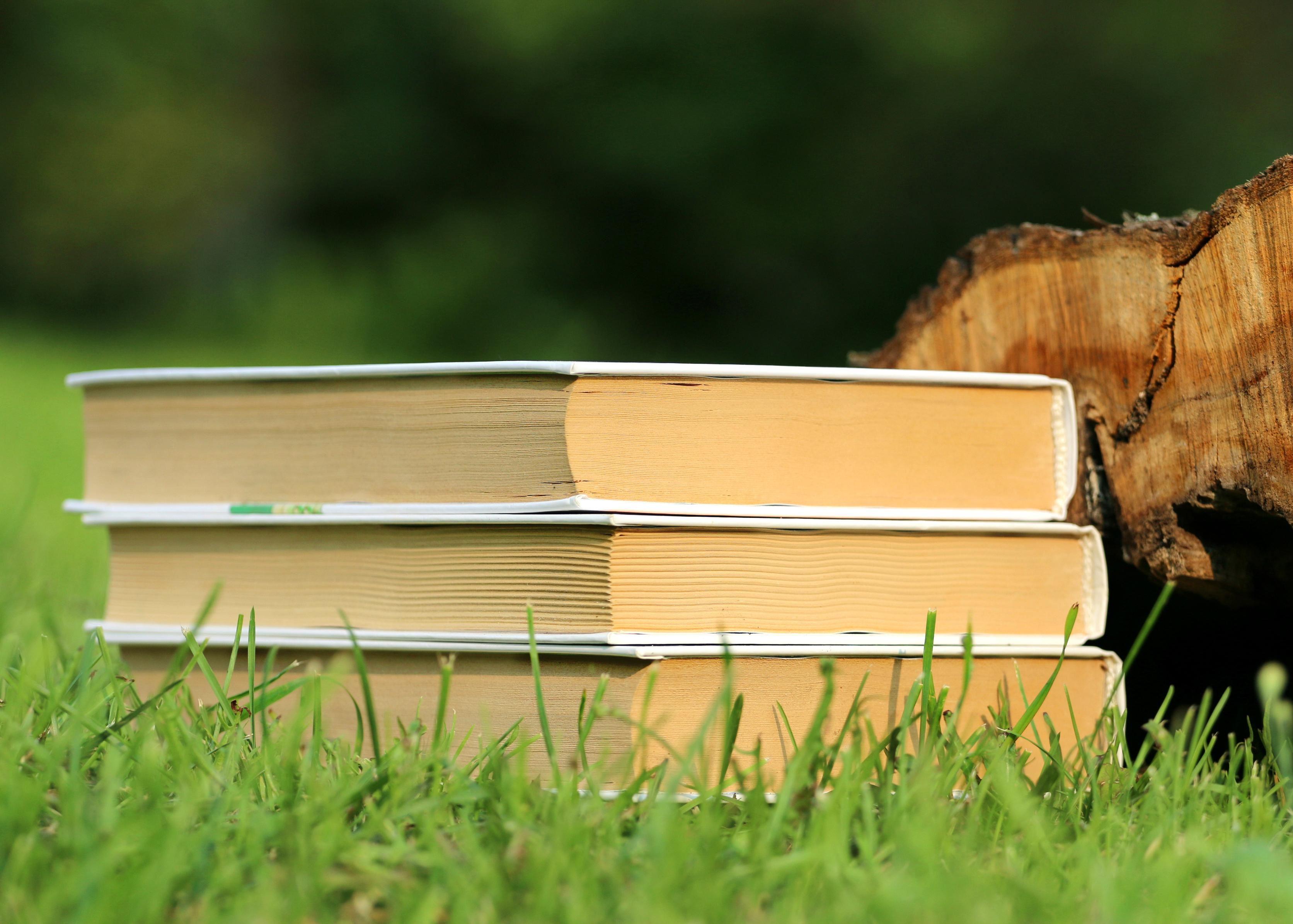 Bokcafé: Kronobergsförfattare
