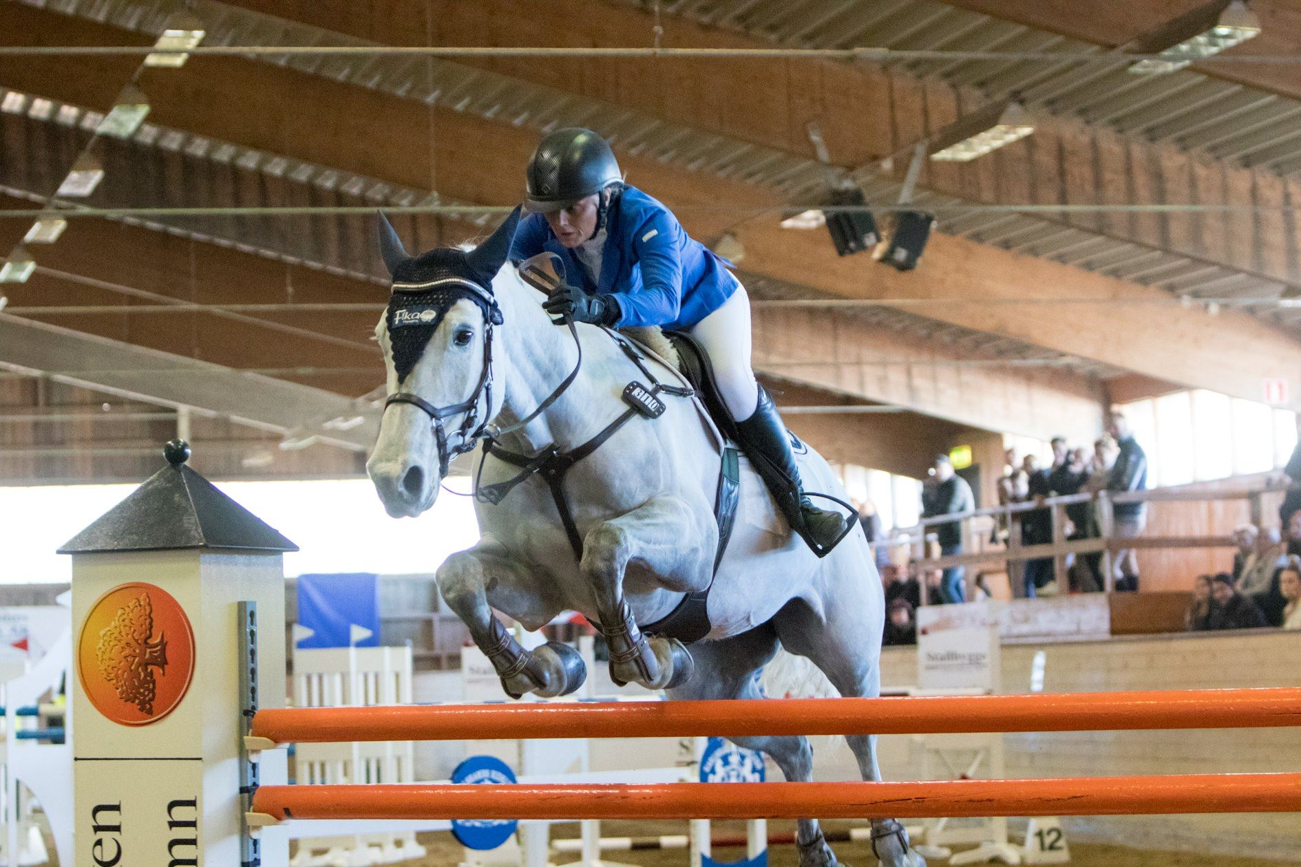 National and regional horse jumping competition