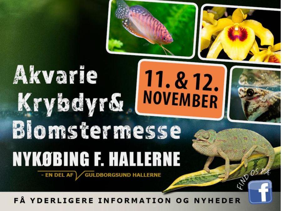 Akvarie-, krybdyr- og blomstermesse i Nykøbing F. Hallerne
