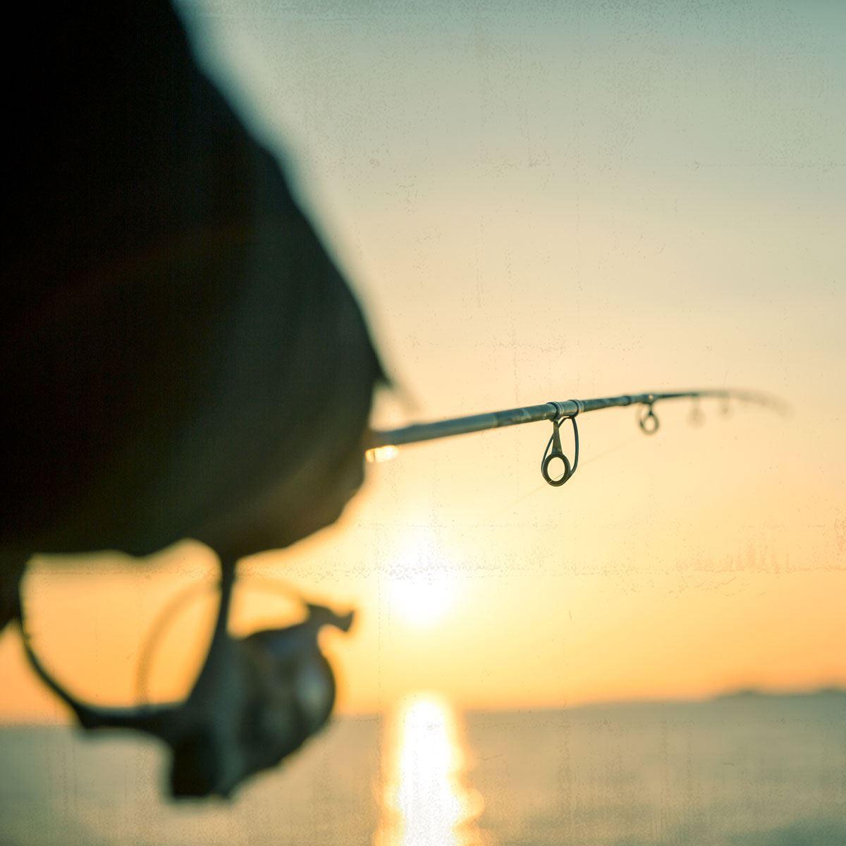 Guidet fisketur - spinnefiskeri