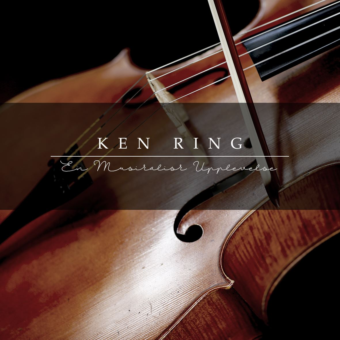 An acoustic concert with Ken Ring