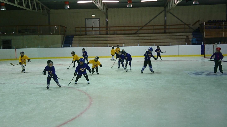 Skridsko- och hockeyskola