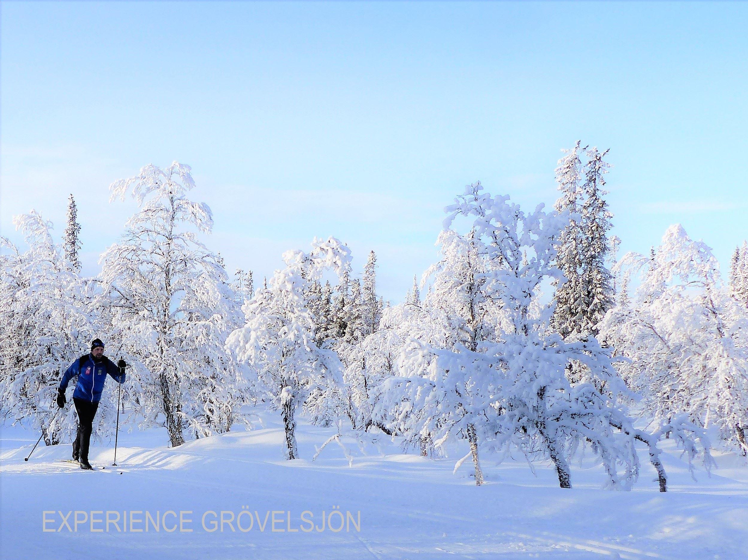 Björn Jonsson, Privatlektioner i tur-och längdskidskola