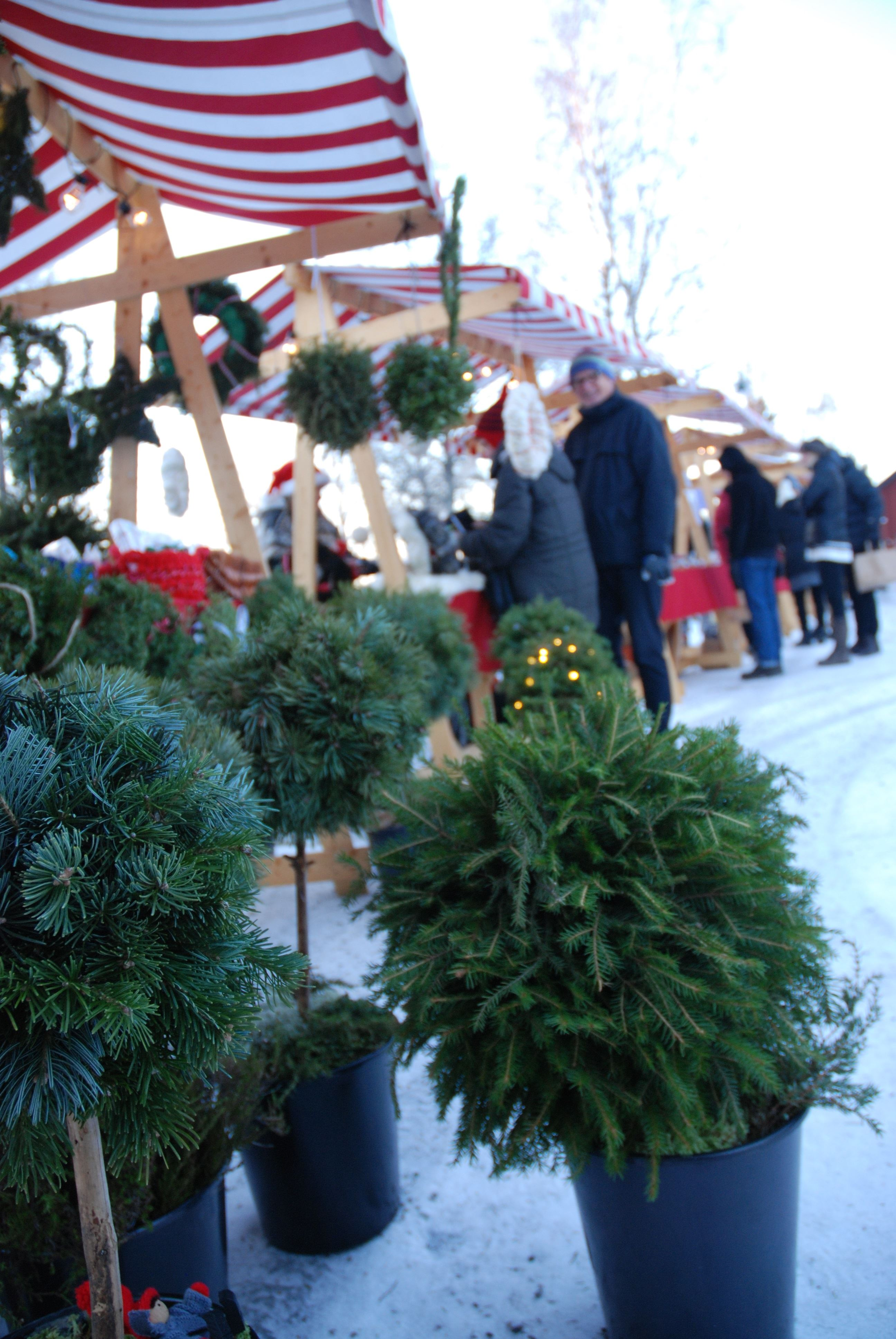 Christmas in Strömbäck