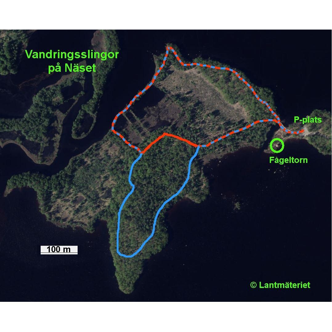 Näset - loop 1,8km